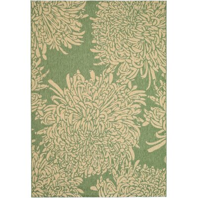 Martha Stewart Tan/Green Area Rug Rug Size: Rectangle 4 x 57