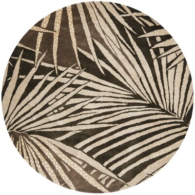 Martha Stewart Coconut/Brown Area Rug Rug Size: Round 6
