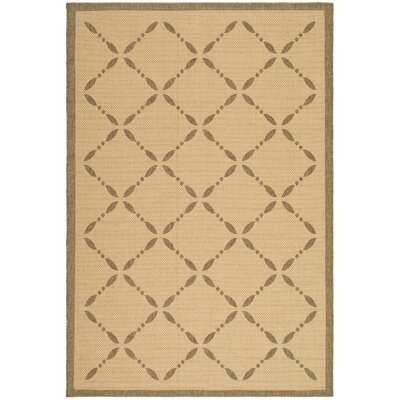 Martha Stewart Creme/Brown Area Rug Rug Size: Rectangle 53 x 77