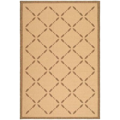 Martha Stewart Creme/Brown Area Rug Rug Size: 67 x 96