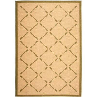 Martha Stewart Cream/Green Area Rug Rug Size: 67 x 96