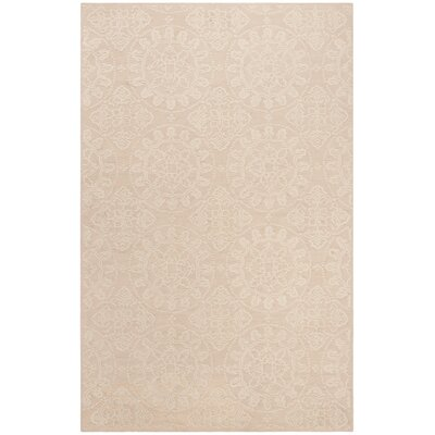Terazza Stucco Area Rug Rug Size: Rectangle 56 x 86