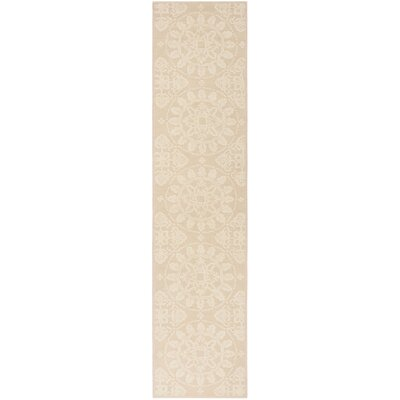 Terazza Stucco Area Rug Rug Size: Runner 23 x 10