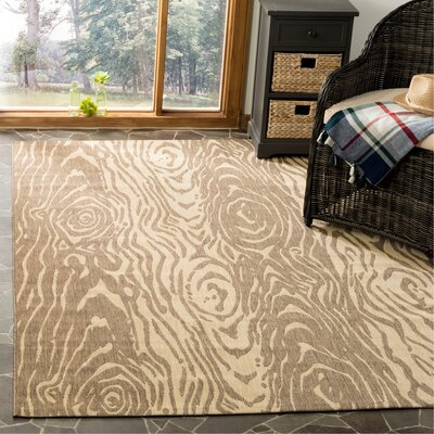 Coffee/Sand Area Rug Rug Size: Rectangle 53 x 77