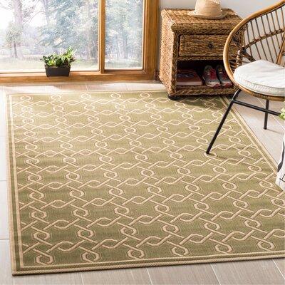 Green/Cream Area Rug Rug Size: Rectangle 53 x 77