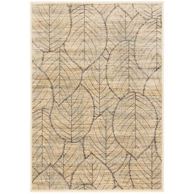Martha Stewart Cream Area Rug Rug Size: Rectangle 4 x 57