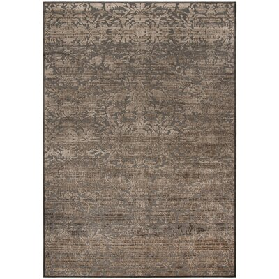 Martha Stewart Heritage Bloom Brown Area Rug Rug Size: Rectangle 8 x 112