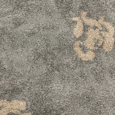 Marybell Shag Grey/Beige Area Rug Rug Size: Rectangle 4 x 6