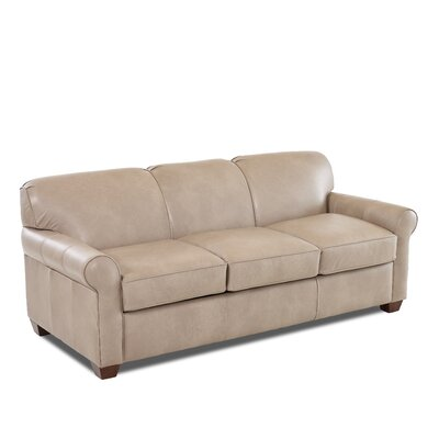 Jennifer Leather Sleeper Sofa Leather Type: Faux Leather, Body Fabric: Steamboat Putty