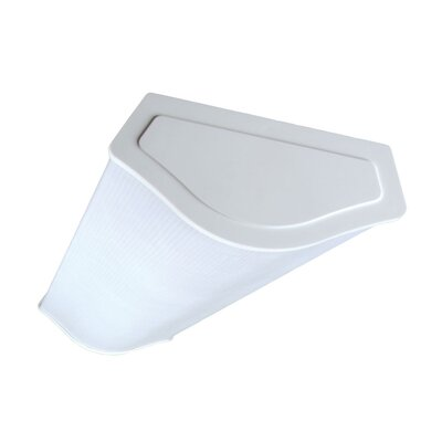 4-Light Wrapround Ceiling Light