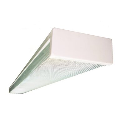 2-Light Wrapround Ceiling Light