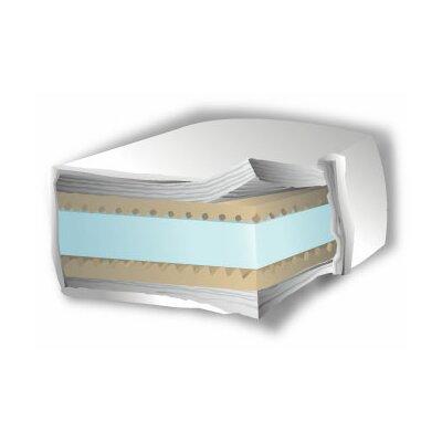 Rosemont 10 Foam Futon Mattress Size: Full