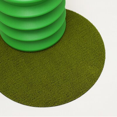 Shag Dot Doormat Color: Green