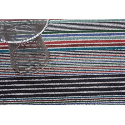 Mixed Stripe Doormats Rug Size: 16 x 24