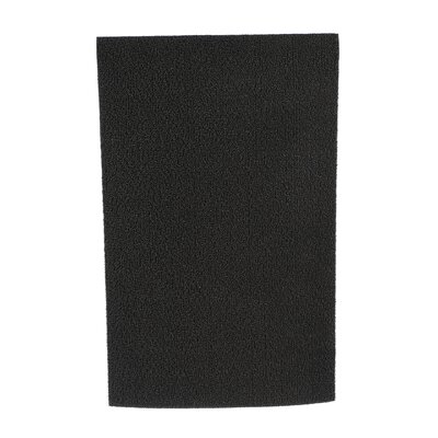 Shag Solid Doormat Size: Rectangle 24 x 36, Color: Solid Black