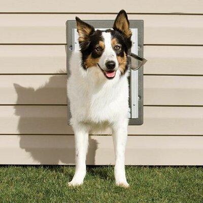 PET SAFE Wall Entry Pet Door - Size: Large