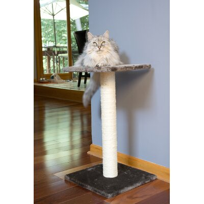 Sisal Scratching Post Color: Light Gray