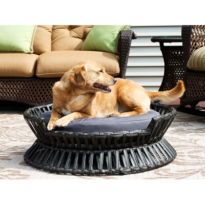 Rattan Raised Arc Dog Bed Size: Small (22 L x 22 W)