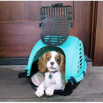 Clifford Beatles Pet Carrier Color: Light Blue