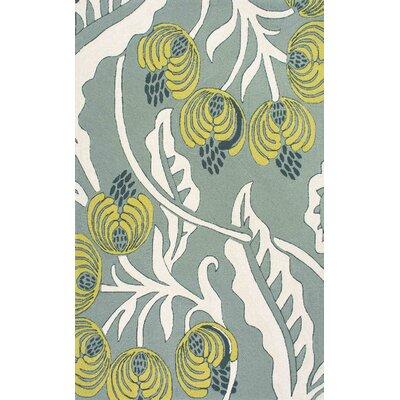 Thomas Paul Hand-Hooked Gray Indoor/Outdoor Area Rug Rug Size: 76 x 96