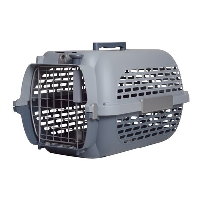 Dogit Model 100 Voyager Pet Carrier Size: Large (14.5 H x 14.8 W x 24.3 L), Color: Gray