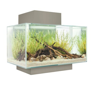 Bernie 6 Gallon Fluval Edge Aquarium Kit Color: Silver
