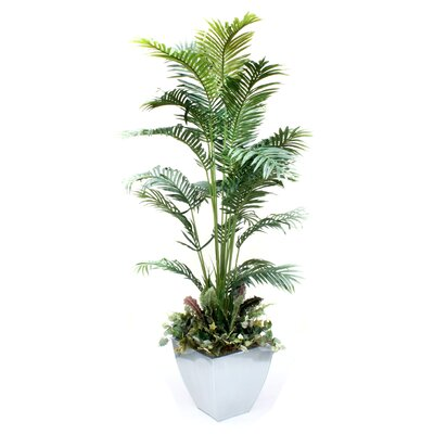 Palm and Greenery Tree in Pot dmr268