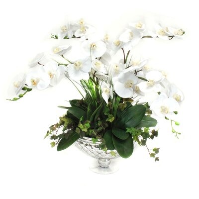 Orchids Floral Arrangement in Decorative Vase co149