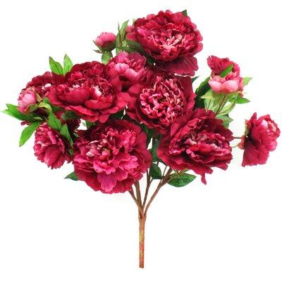 Peony Bush Flower