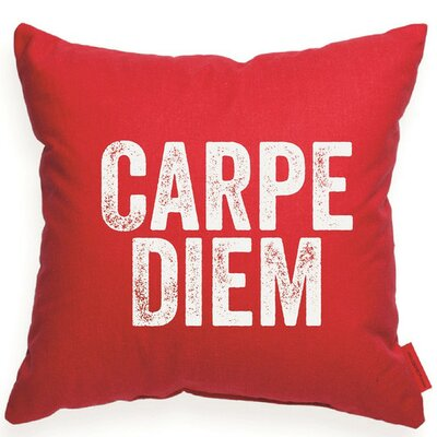 Expressive Carpe Diem Decorative Throw Pillow Size: Large, Color: Red