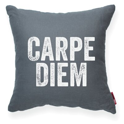 Expressive Carpe Diem Decorative Throw Pillow Size: Large, Color: Gray