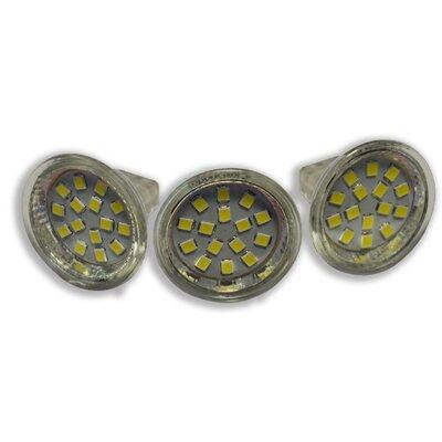 3 Watt LED Light Bulb