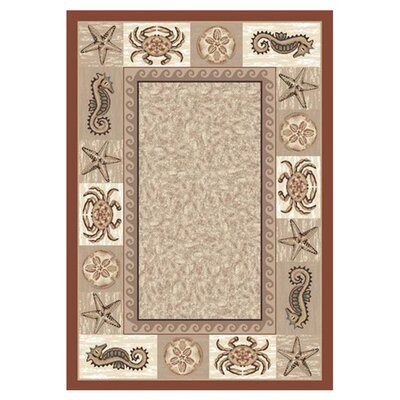 Signature Sea Life Coral Area Rug Rug Size: Oval 5'4