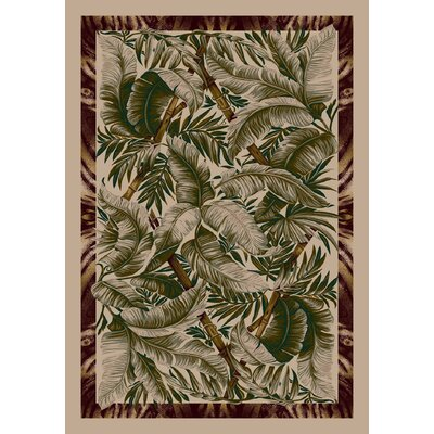 Signature Jungle Fever Pearl Mist Area Rug Rug Size: Rectangle 78 x 109