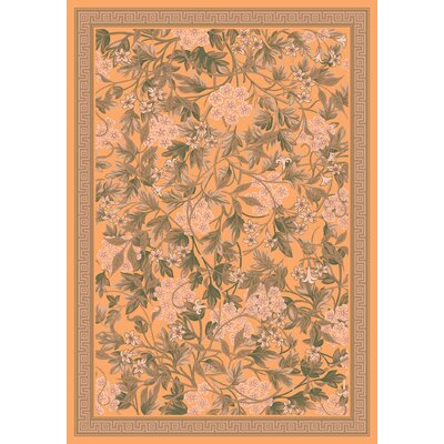 Pastiche Delphi Harvest Floral Rug Rug Size: Rectangle 78 x 109