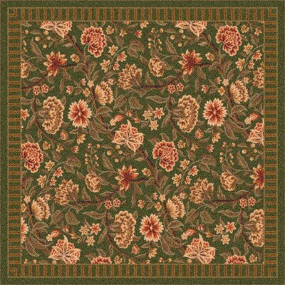 Pastiche Vachell Deep Olive Area Rug Rug Size: Rectangle 78 x 109