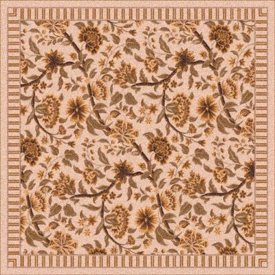 Pastiche Vachell Ecru Brown Area Rug Rug Size: Rectangle 78 x 109