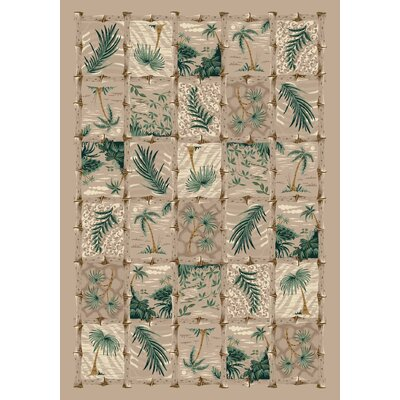 Signature Cayman Isle Pearl Mist Ares Rug Rug Size: Rectangle 78 x 109