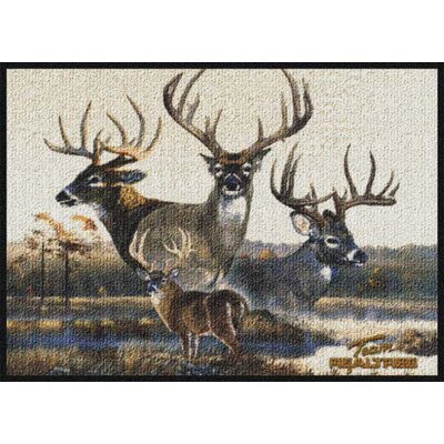 Realtree Team Realtree Bucks VI Doormat Size: Rectangle 310 x 54