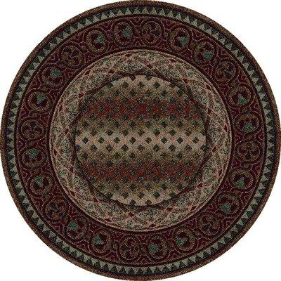 Signature Mohavi Dark Amber Area Rug Rug Size: Round 77