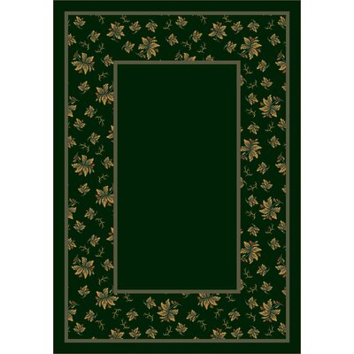 Design Center Emerald Erin Area Rug Rug Size: 54 x 78
