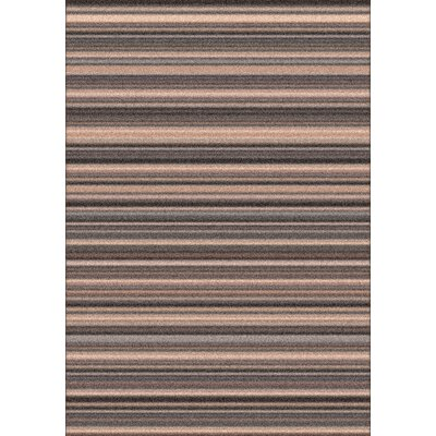 Modern Times Canyon Wispy Area Rug Rug Size: Rectangle 5'4