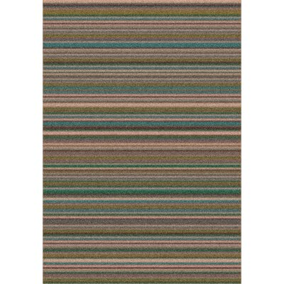 Modern Times Canyon Stucco Area Rug Rug Size: Rectangle 5'4