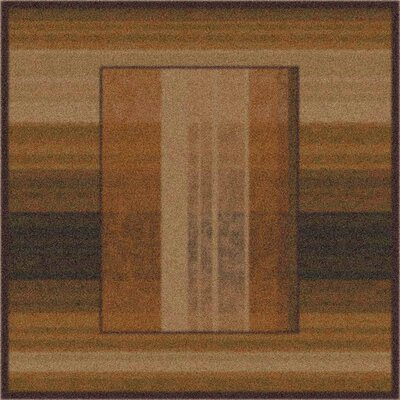 Modern Times Aspire Dark Chocolate Area Rug Rug Size: Square 77
