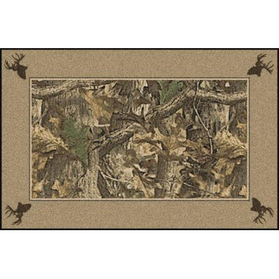 Realtree Timber Solid Border Brown Area Rug Rug Size: Rectangle 28 x 310