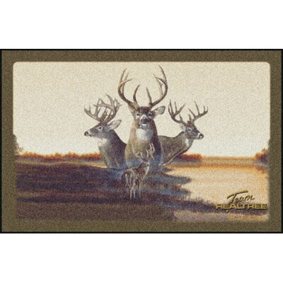 Realtree Team Realtree Bucks VII Doormat Size: 310 x 54