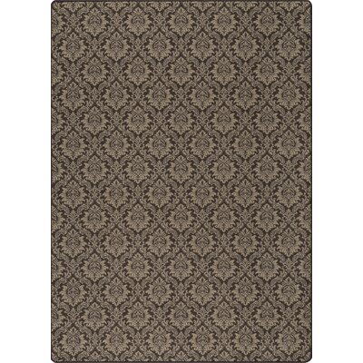 Imagine Truffle Area Rug Rug Size: 54 x 78