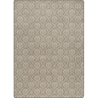 Imagine Antique Khaki Area Rug Rug Size: 78 x 109