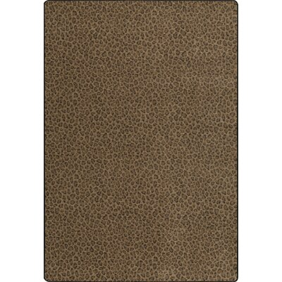 Imagine Brown Area Rug Rug Size: 78 x 109