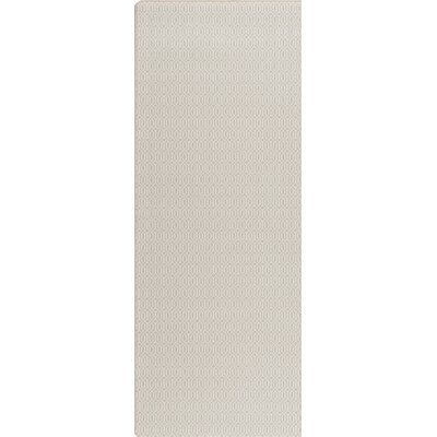 Imagine Raw Umber Area Rug Rug Size: Runner 21 x 78